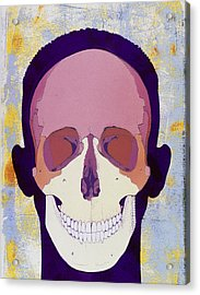 Artwork Of A Human Skull In Front View Acrylic Print by Hans-ulrich Osterwalder