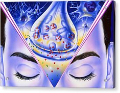 Artwork Showing Sleeping Drug Action With Face Acrylic Print by John Bavosi