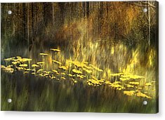 As Nature Intended Acrylic Print