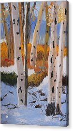 Aspens On Snowy Ground Acrylic Print by Michele Turney