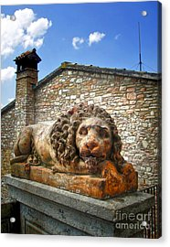 Assisi Italy - Lion Statue Acrylic Print by Gregory Dyer