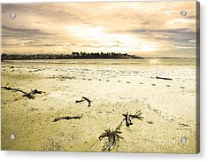 Acrylic Print featuring the photograph At Caroline Bay Timaru New Zealand by Nareeta Martin