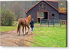 At Day's End Acrylic Print by Susan Leggett