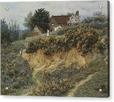 At Sandhills Witley Acrylic Print by Helen Allingham