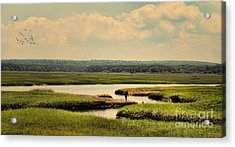 Acrylic Print featuring the photograph At The Marsh by Gina Cormier
