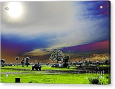 At The Mudjam Acrylic Print by Don Youngclaus