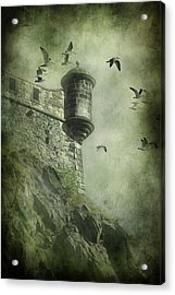 At The Top Acrylic Print by Svetlana Sewell