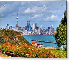 Auckland Acrylic Print by Lynette McNees