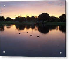 Acrylic Print featuring the photograph August Sunset by Sheila Silverstein
