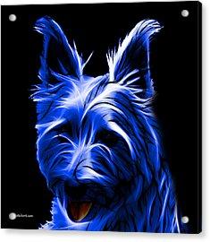 Australian Terrier Pop Art - Blue Acrylic Print