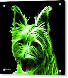Australian Terrier Pop Art - Green Acrylic Print by James Ahn