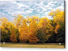 Autum In Texas Acrylic Print by Lynnette Johns