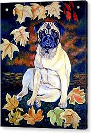 Autumn - Pug Acrylic Print