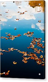 Autumn - 3 Acrylic Print