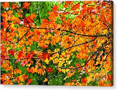 Autumn Abstract Painterly Acrylic Print by Andee Design