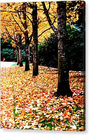 Autumn Alley  5 Acrylic Print