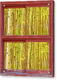 Autumn Aspen Trees Red Rustic Picture Window Frame Photos Fine A Acrylic Print by James BO  Insogna