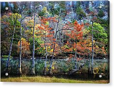 Autumn At Beaver's Bend Acrylic Print by Tamyra Ayles