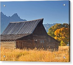 Autumn At The Barn Grand Teton National Park Acrylic Print