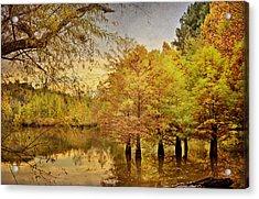 Autumn At The Creek Acrylic Print by Cheryl Davis