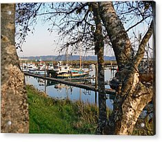 Autumn At The Harbor Acrylic Print by Pamela Patch