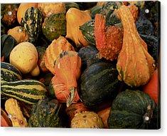 Autumn Bounty Acrylic Print by Patrice Zinck