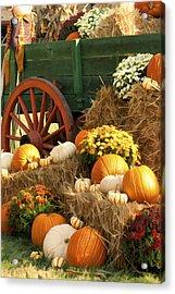Autumn Bounty Vertical Acrylic Print by Kathy Clark