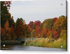 Acrylic Print featuring the photograph Autumn Bridge by Tannis  Baldwin