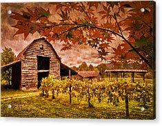 Autumn Cabernet Acrylic Print by Debra and Dave Vanderlaan