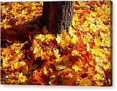 Autumn Carpet Acrylic Print