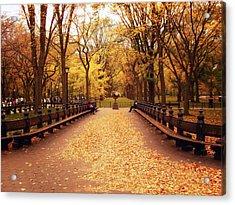 Autumn - Central Park - New York City Acrylic Print by Vivienne Gucwa