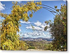 Autumn Clouds With Foliage Acrylic Print