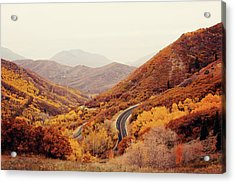 Autumn Colored Trees Along Mountain Road Acrylic Print by Www.julia-wade.com