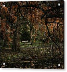 Autumn Colors Acrylic Print by Akos Kozari