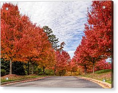 Acrylic Print featuring the photograph Autumn Colors by Anna Rumiantseva
