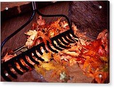 Autumn Colors Acrylic Print by Luis Esteves