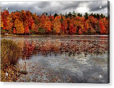 Acrylic Print featuring the photograph Autumn Colors by Yelena Rozov