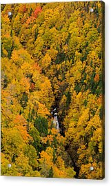 Autumn Colour And Waterfalls, Cape Acrylic Print by John Sylvester