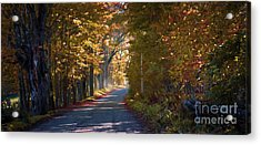 Autumn Country Road - Oil Acrylic Print by Edward Fielding