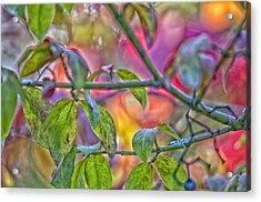 Autumn Crayolas Acrylic Print by Ross Powell