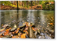 Acrylic Print featuring the photograph Autumn Creek by Yelena Rozov