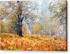 Autumn Dreams Acrylic Print by Evgeni Dinev
