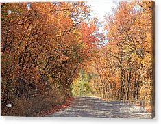 Autumn Escape  Acrylic Print