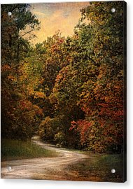 Autumn Forest 1 Acrylic Print by Jai Johnson