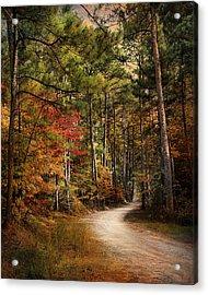 Autumn Forest 2 Acrylic Print by Jai Johnson