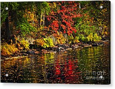 Autumn Forest And River Landscape Acrylic Print by Elena Elisseeva