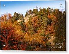 Autumn Forever Acrylic Print by Lutz Baar