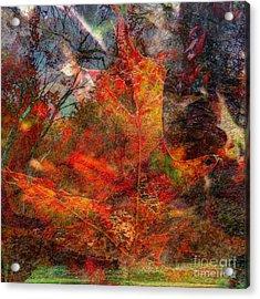 Autumn Fusion 2 Acrylic Print