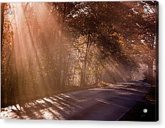 Acrylic Print featuring the photograph Autumn God Light by Tom Singleton