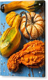 Autumn Gourds Still Life Acrylic Print